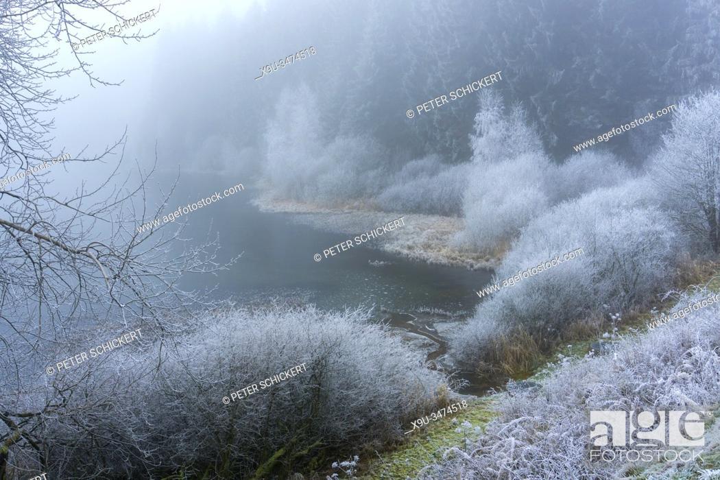 Stock Photo: Zugefrorener Teich des Oberharzer Wasserregal, Teil des UNESCO Welterbe im Harz, Clausthal-Zellerfeld, Niedersachsen, Deutschland | Frozen pond of the Upper.