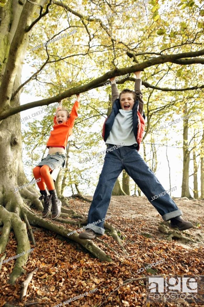 Stock Photo: Children playing on tree.