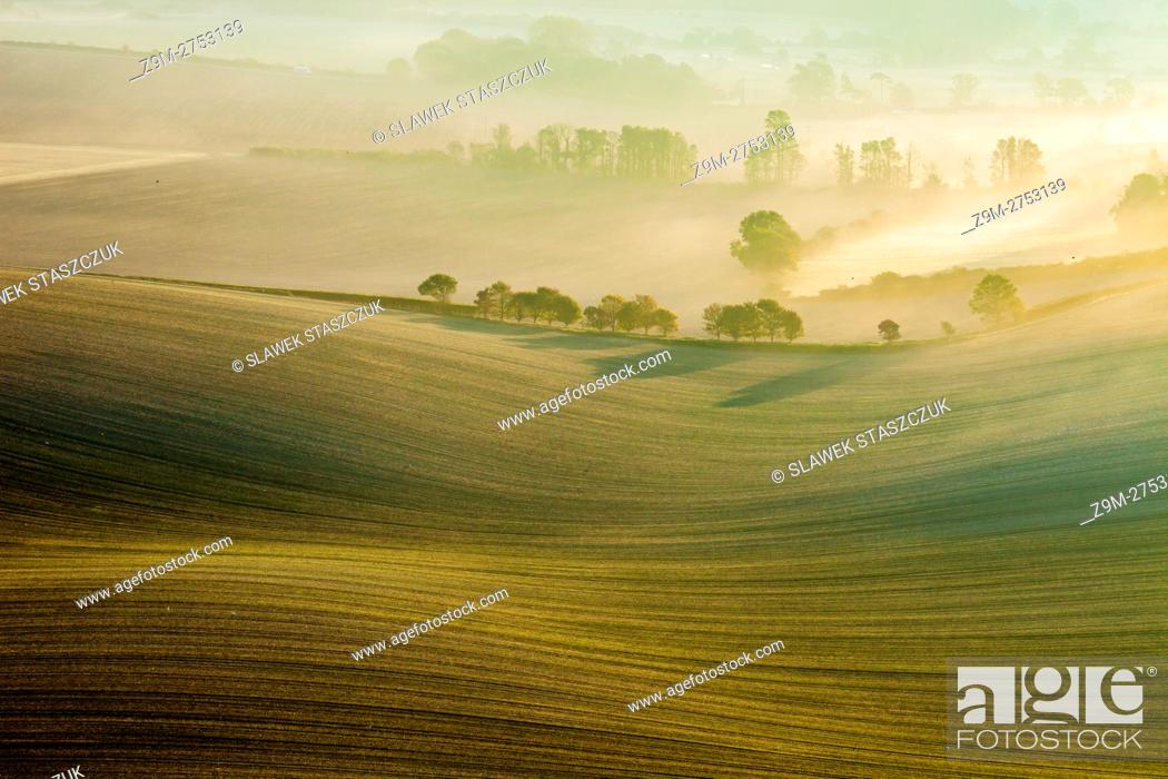 Stock Photo: Misty autumn sunrise in South Downs National Park, East Sussex, England.