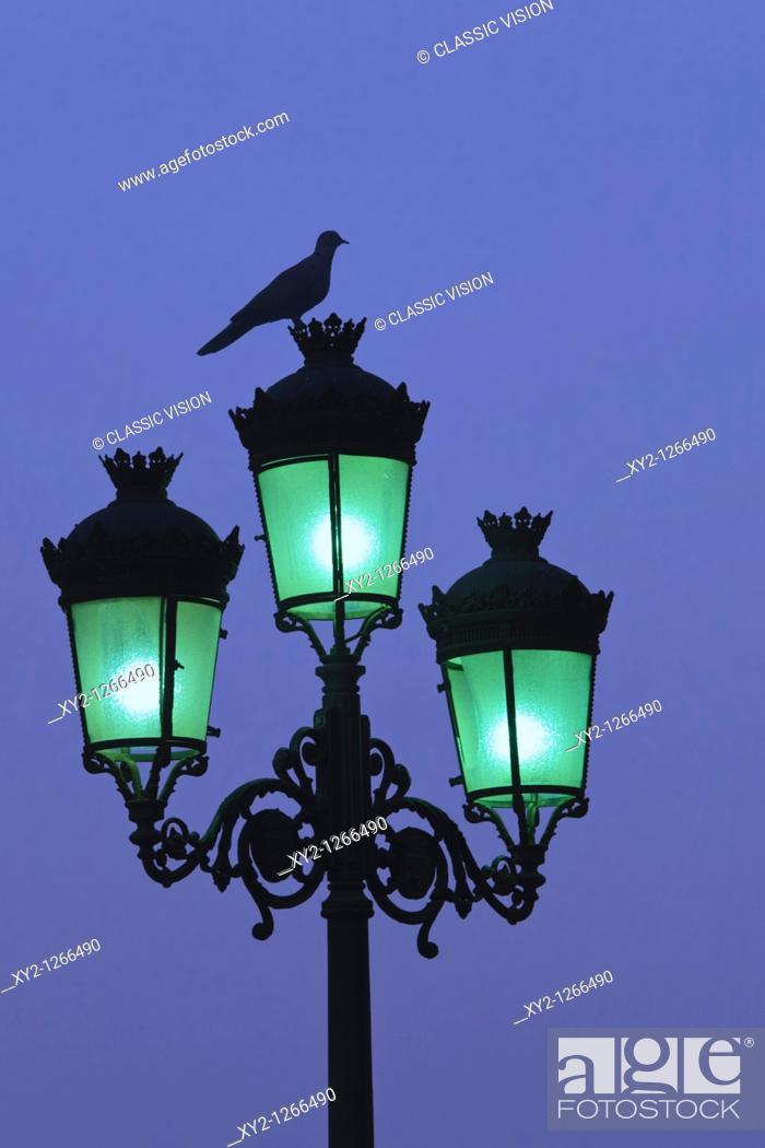 Stock Photo: Bird on top of city lamp post at dusk.
