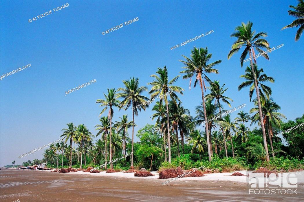 Stock Photo: The Kuakata beach, at patuakhali district, Bangladesh.