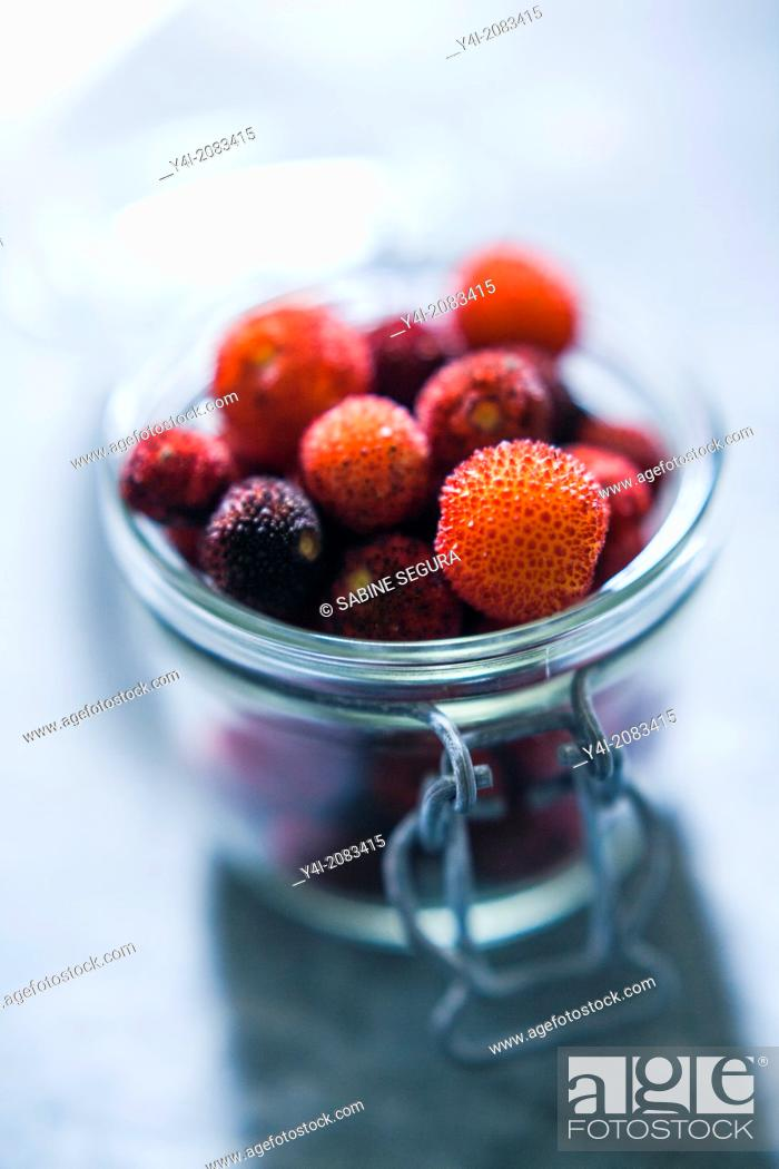 Stock Photo: Arbutus berries.