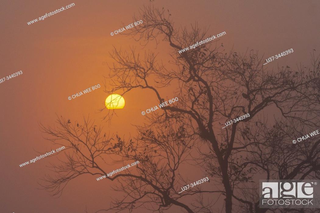Stock Photo: Sunrise in Phu Thab Buek, Phetchabun, Thailand.