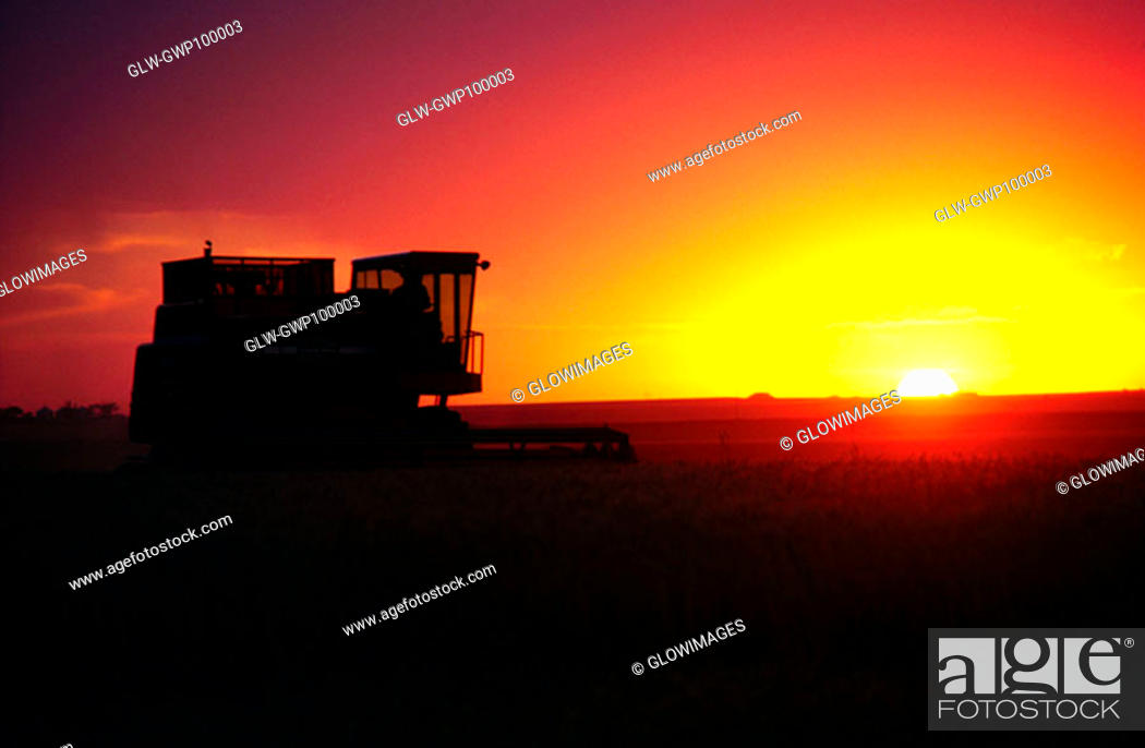 Stock Photo: Wheat harvest and a combine with sunset in the background, Burlington ,Colorado.