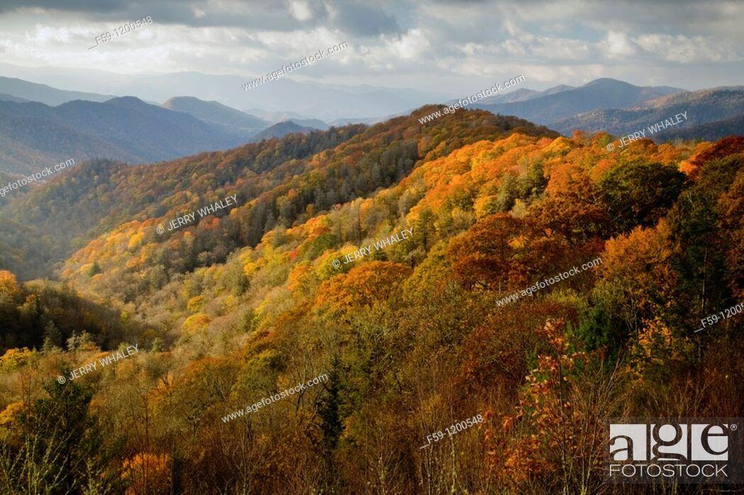 Stock Photo: Autumn, Great Smoky Mountains National Park.