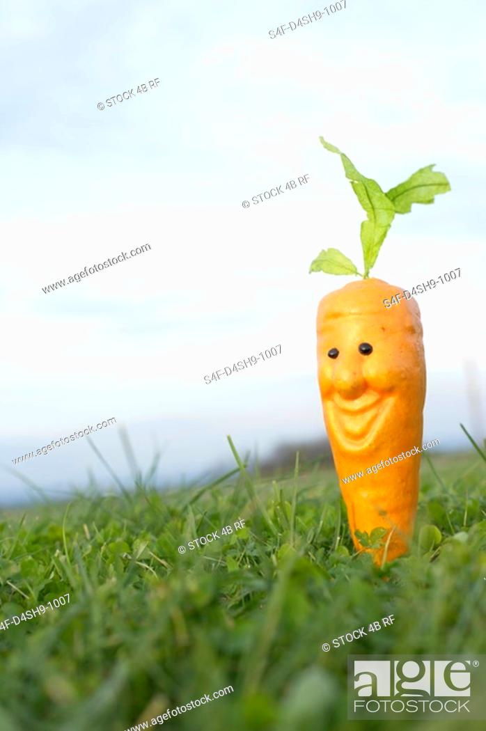 Stock Photo: Toy carrot on a meadow, selective focus.