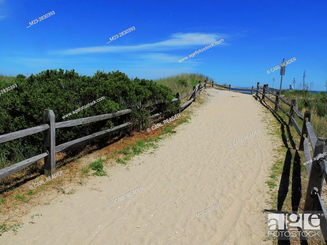 Stock Photo: The dunes are fenced off to form this entrance to the beach at Avalon, New Jersey, USA.