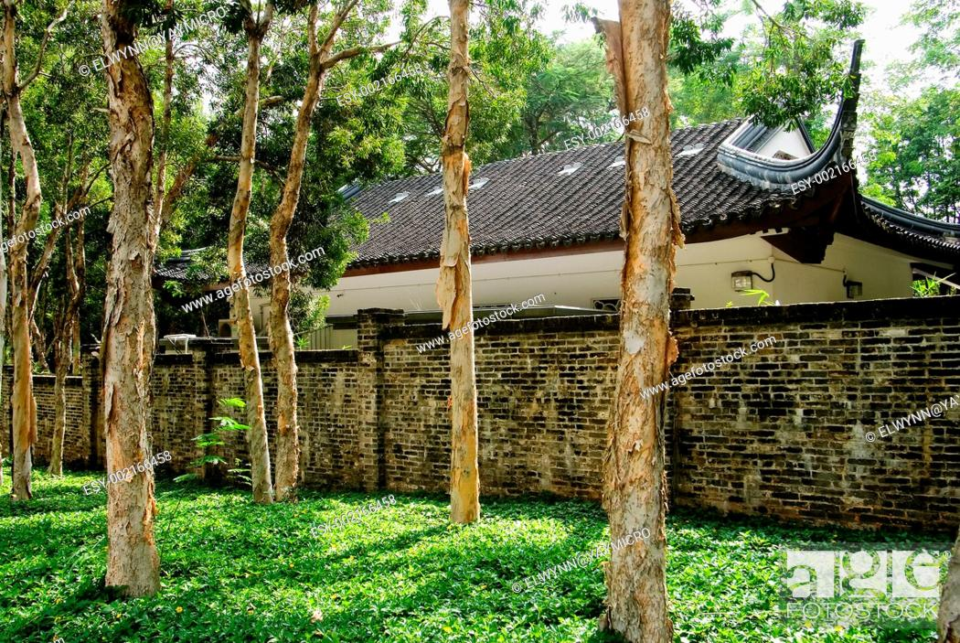 Stock Photo: Chinese traditional house behind the forest.