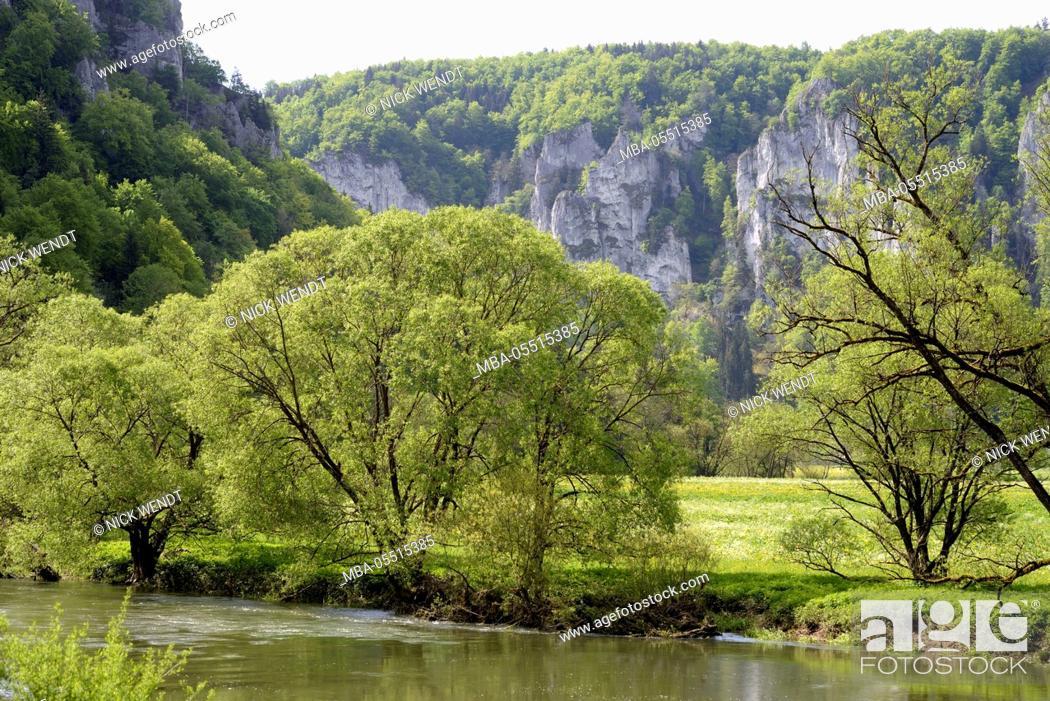 Stock Photo: the Danube close Neidingen in the spring.