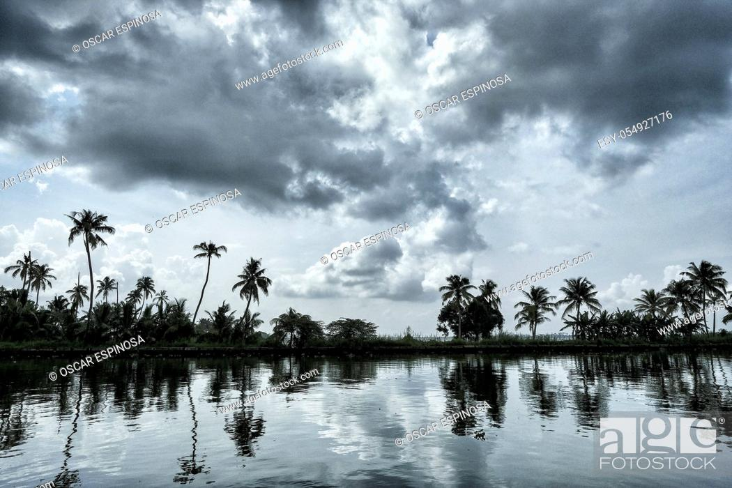 Stock Photo: Silhouette of palm trees in the backwaters of Alleppey in Kerala. India.