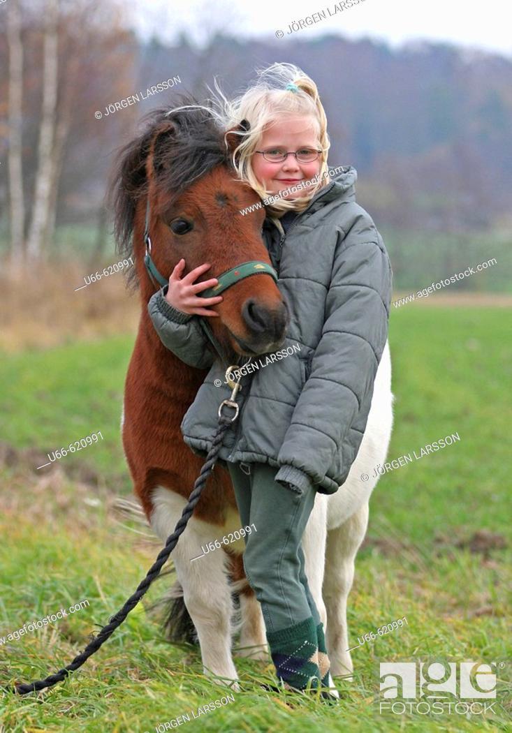 Stock Photo: Shetland Pony.
