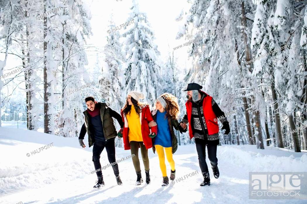 Stock Photo: A group of young cheerful friends on a walk outdoors in snow in winter forest, walking.