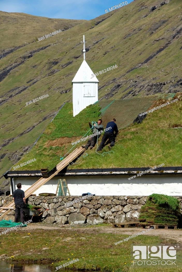 Stock Photo: roof works with sods at the church of Saksun, Denmark, Faroe Islands, Streymoy.