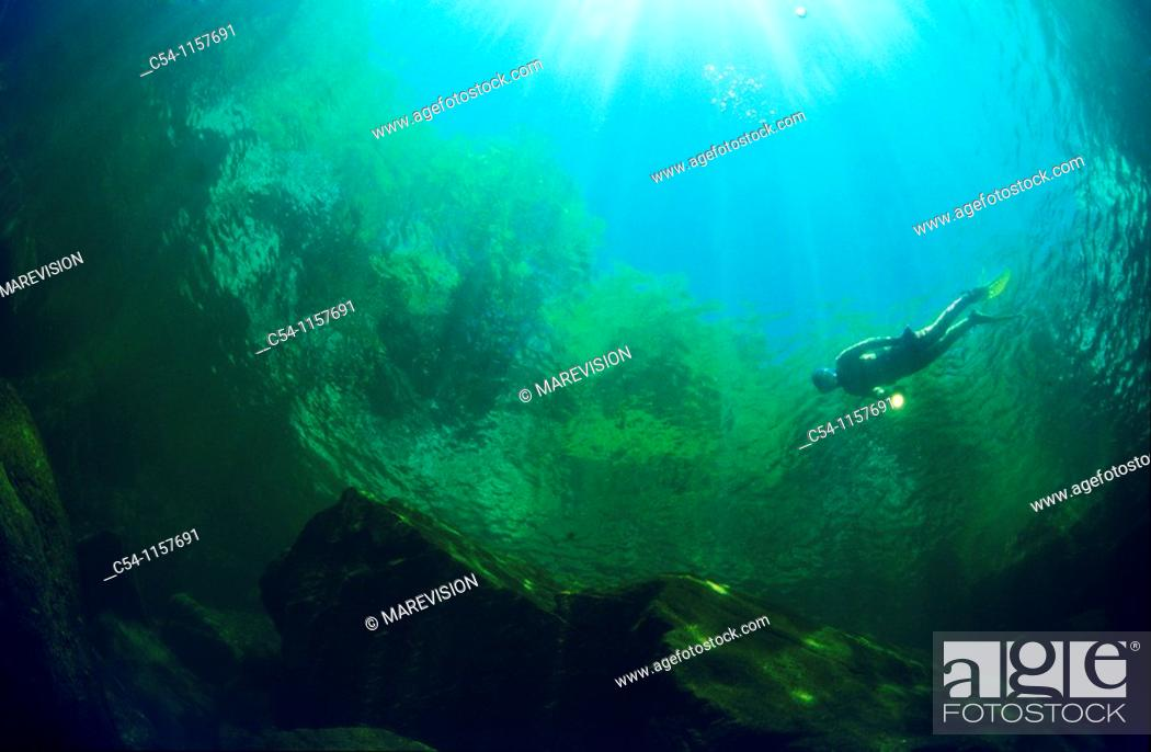 Stock Photo: Freshwater Rivers  Diving in a river  Rio Verdugo, Galicia, Spain.