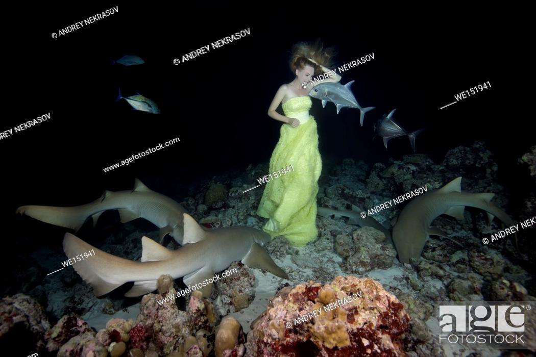 Stock Photo: Young beautiful woman in yellow dress posing underwater with Tawny nurse sharks (Nebrius ferrugineus), night shooting, Indian Ocean, Maldives.