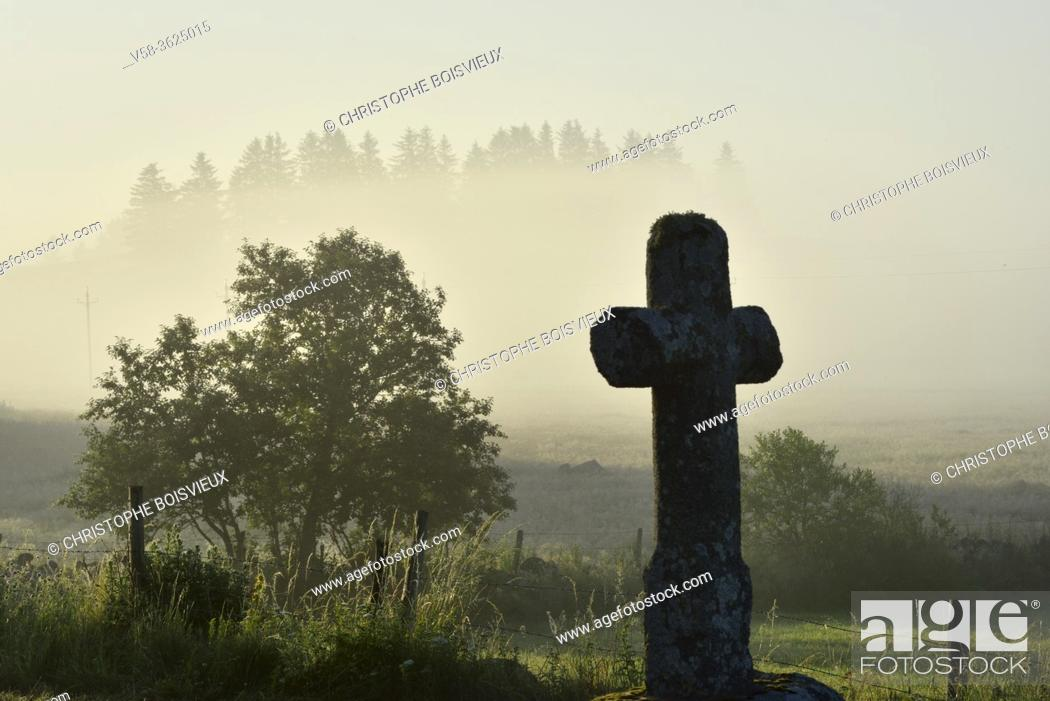 Photo de stock: France, Lozère, Parc naturel régional de l'Aubrac, Early morning near Nasbinals.