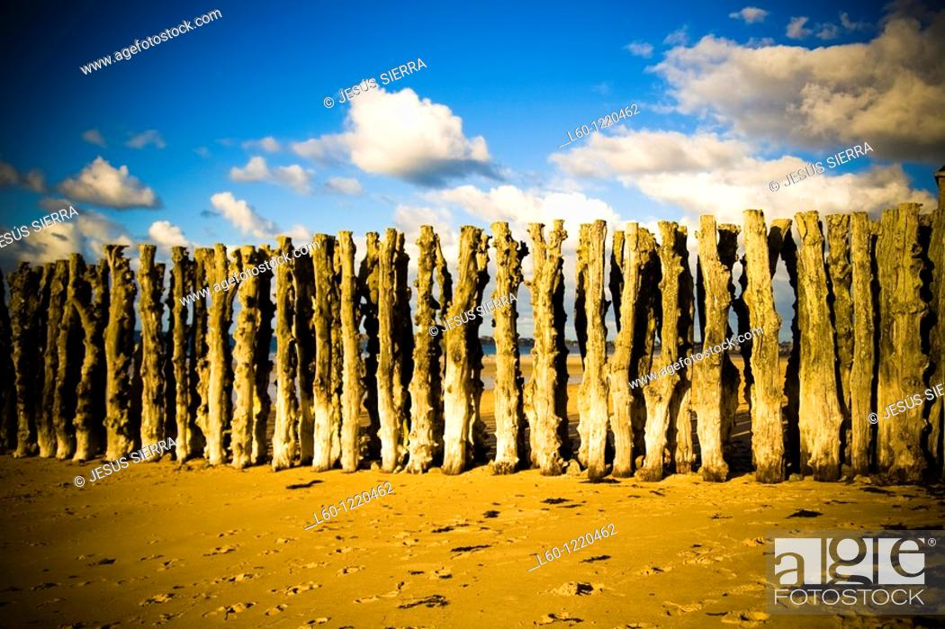 Stock Photo: Wooden stakes, Saint Malô, Brittany, France.