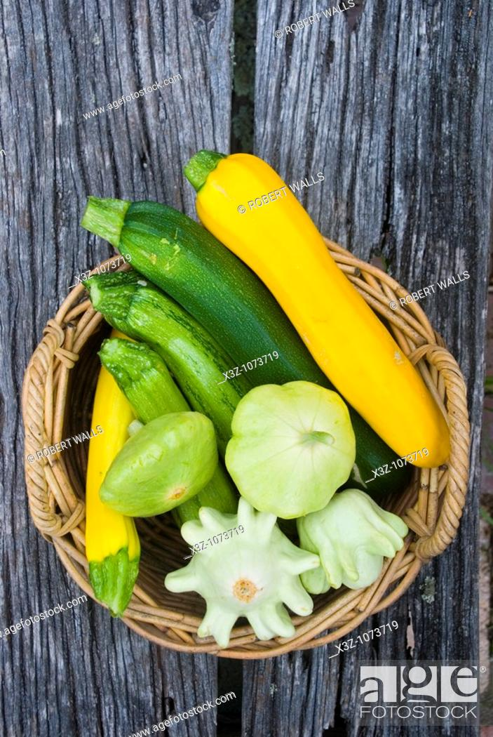 Stock Photo: A variety of cucurbits and squash.