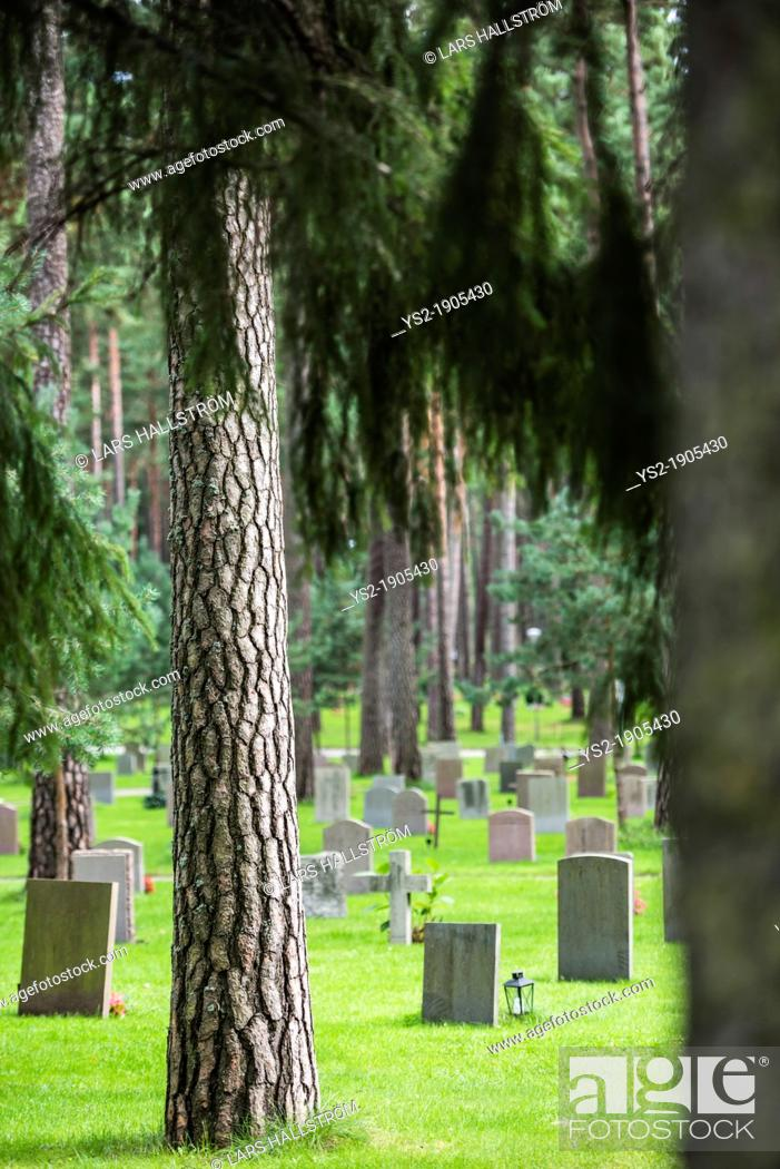 Grave stones and trees at skogskyrkogarden forest cemetery