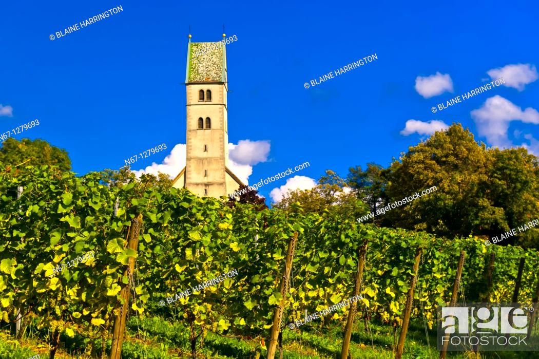 Stock Photo: Vineyards, the medieval city of Meersburg on Lake Constance Bodensee, Baden-Württemberg, Germany.