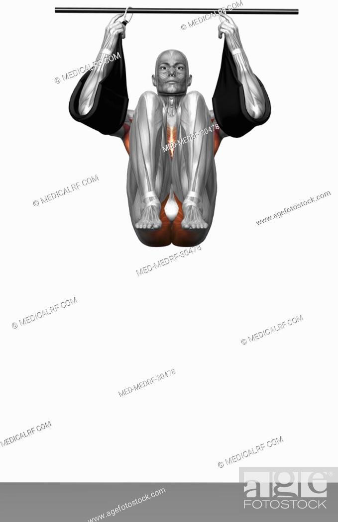Stock Photo: Hanging leg raises Part 1 of 2.