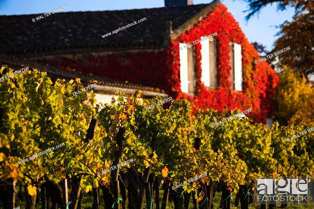 Stock Photo: France, Aquitaine Region, Gironde Department, St-Emilion, wine town, UNESCO-listed vineyards.