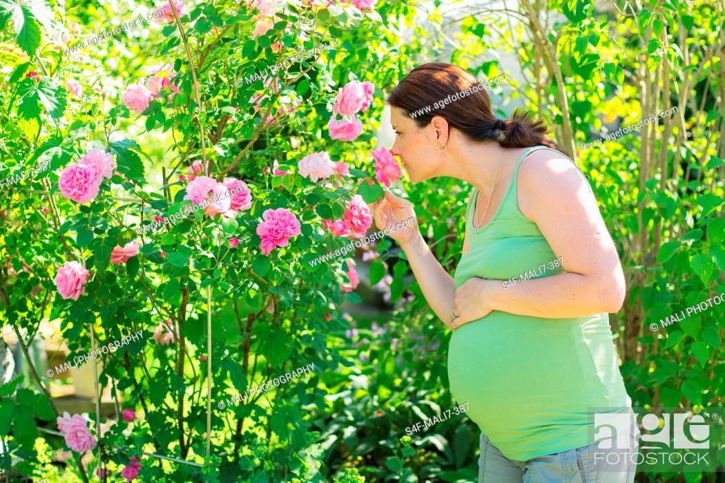 Imagen: Schwangere Frau riecht an Rosen.