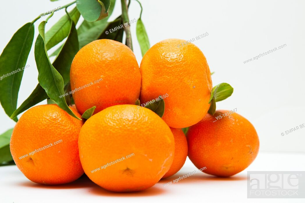 Imagen: oranges, typical from Valencia, Spain.