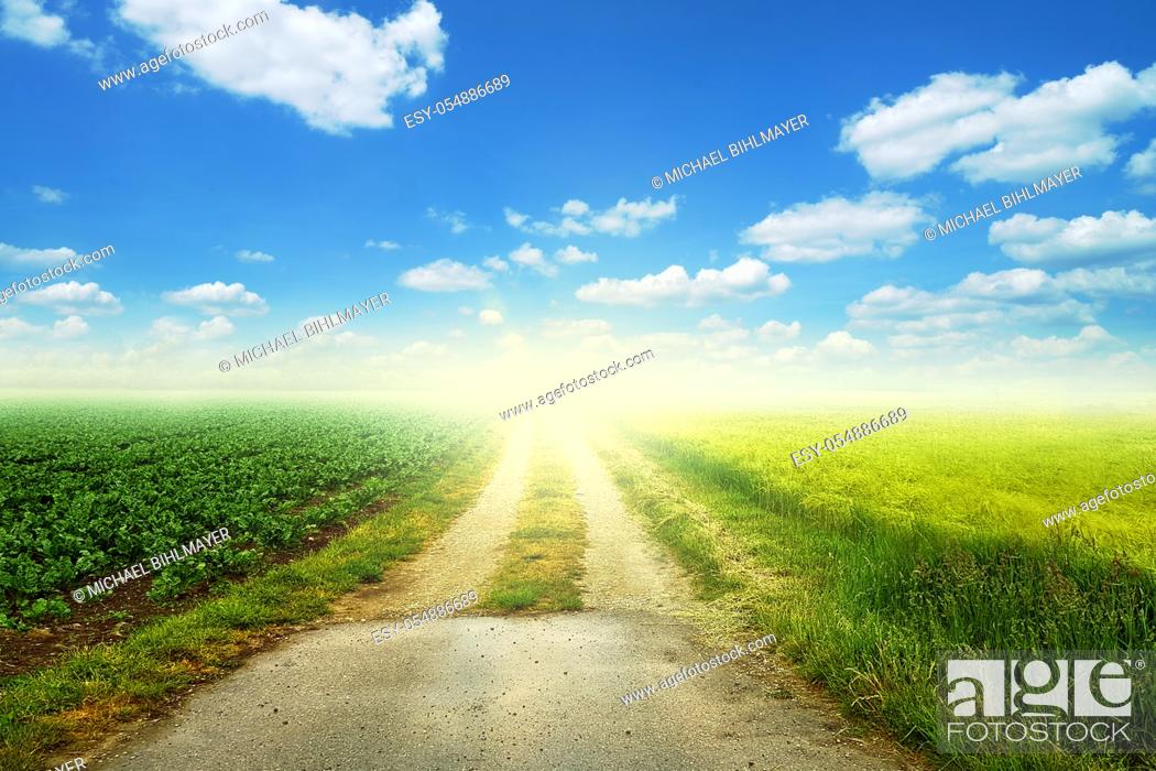Stock Photo: dirt road that leads straight out. green meadow to the side of the path that leads into the distance. blue sky with white clouds and shine sun.