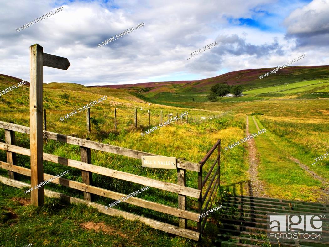 Stock Photo: Bells Valley in the Northumberland National Park near Wooler Northumberland England.