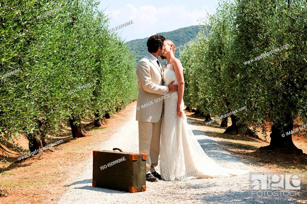 Stock Photo: Newlyweds kissing on country road with suitcase.