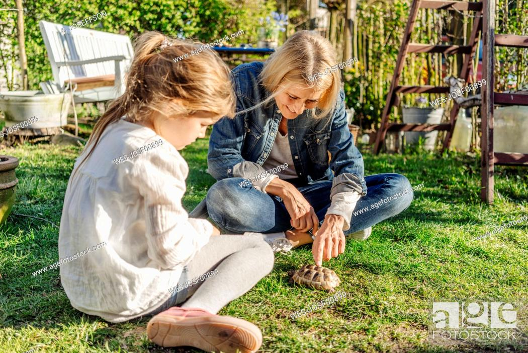 Stock Photo: Smiling mature woman and girl with tortoise in garden.