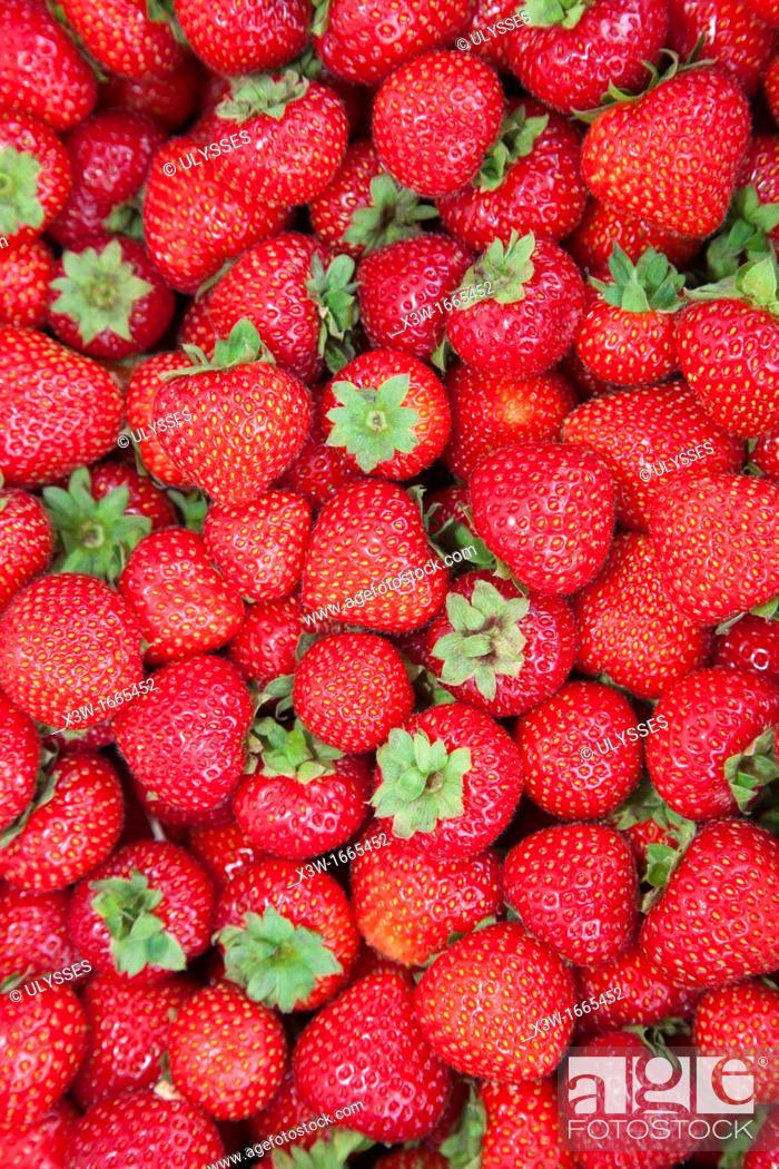 Stock Photo: strawberries, tammelantori market, tampere, finland, europe.