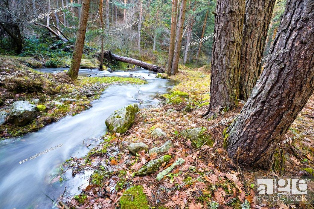 Stock Photo: The Acebedas river in the Sierra de Guadarrama Segovia Castilla León Spain.