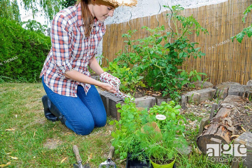 Imagen: kneeing in the garden and putting on garden gloves, Austria.