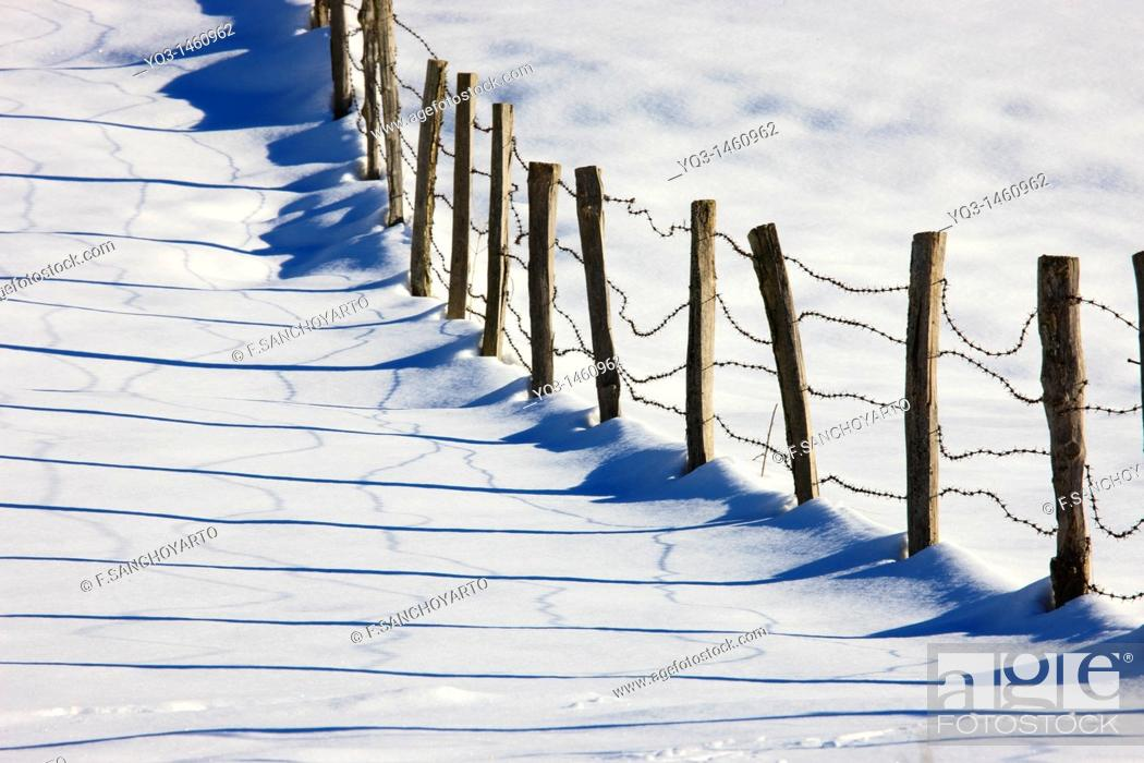Stock Photo: Old fence after a snow storm, Piedrasluengas pass, Cantabria, Spain.