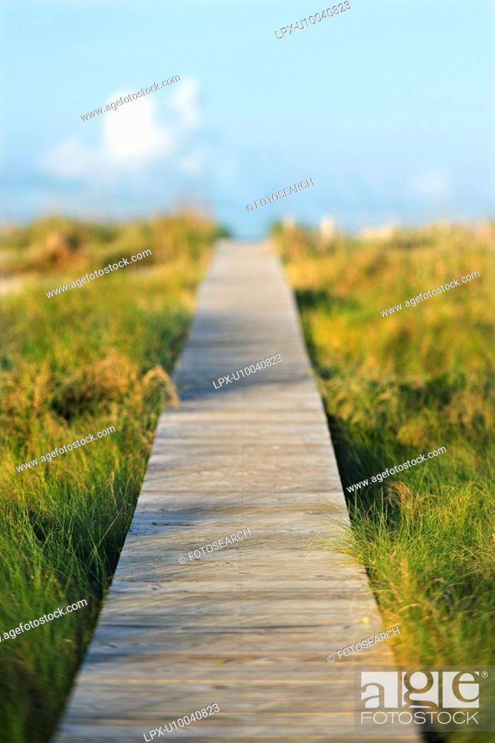 Stock Photo: Wooden beach access walkway.