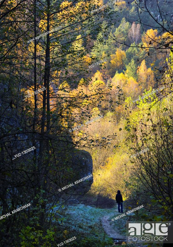 Stock Photo: Autumn in jurassic valley near Krakow, Poland.