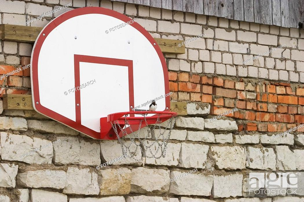 Stock Photo: Basketball, Sport, Board, Bricks, Fixed.