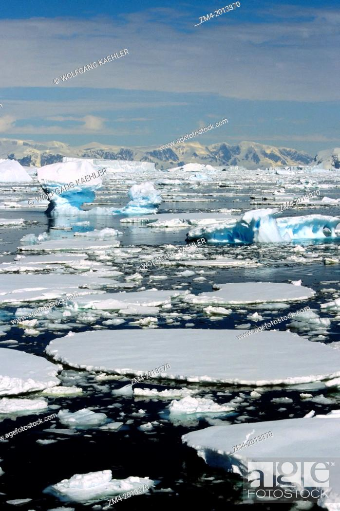 Imagen: ANTARCTIC PENINSULA AREA, PACK ICE & ICEBERGS.