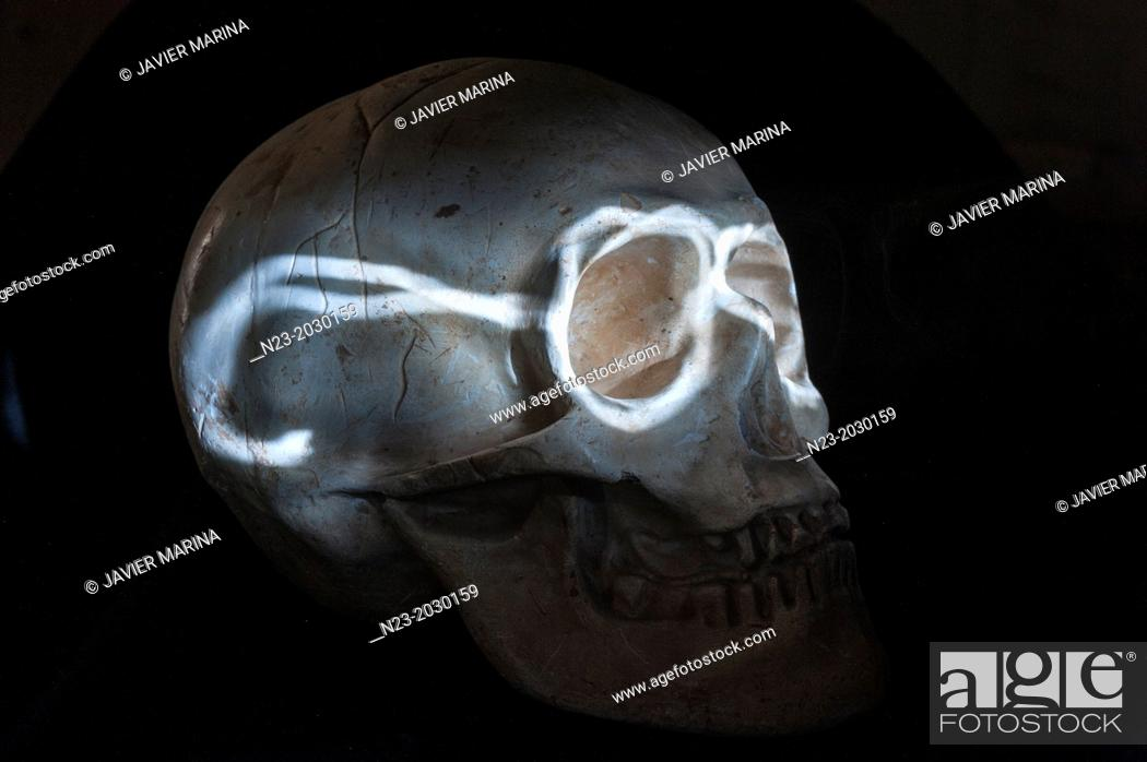 Stock Photo: Skull painted with light.