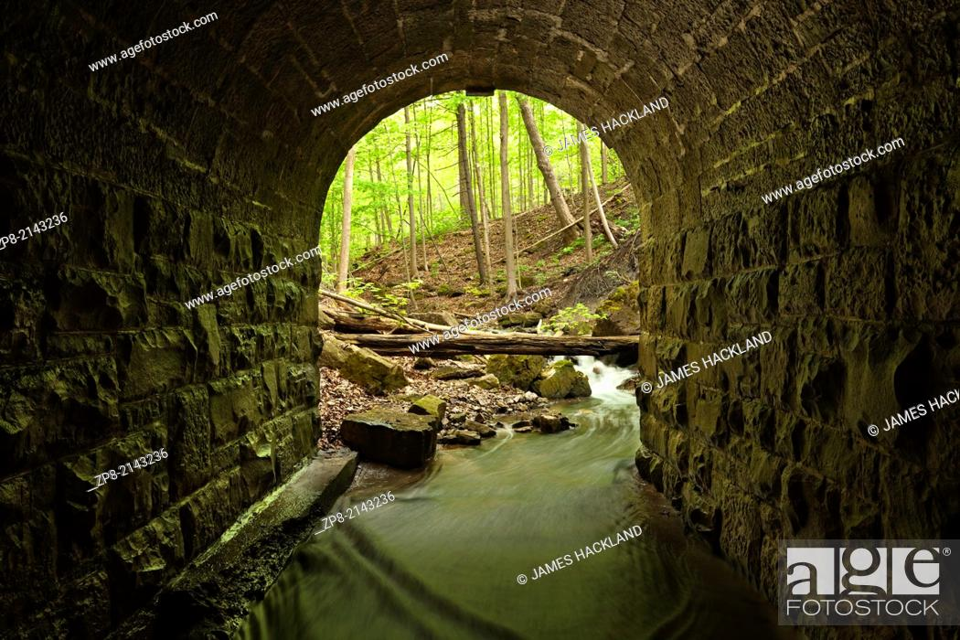 Stock Photo: The entrance of a lovely stone block culvert looking out towards the forest in Tiffany Falls Conservation Area, Hamilton, Ontario, Canada.