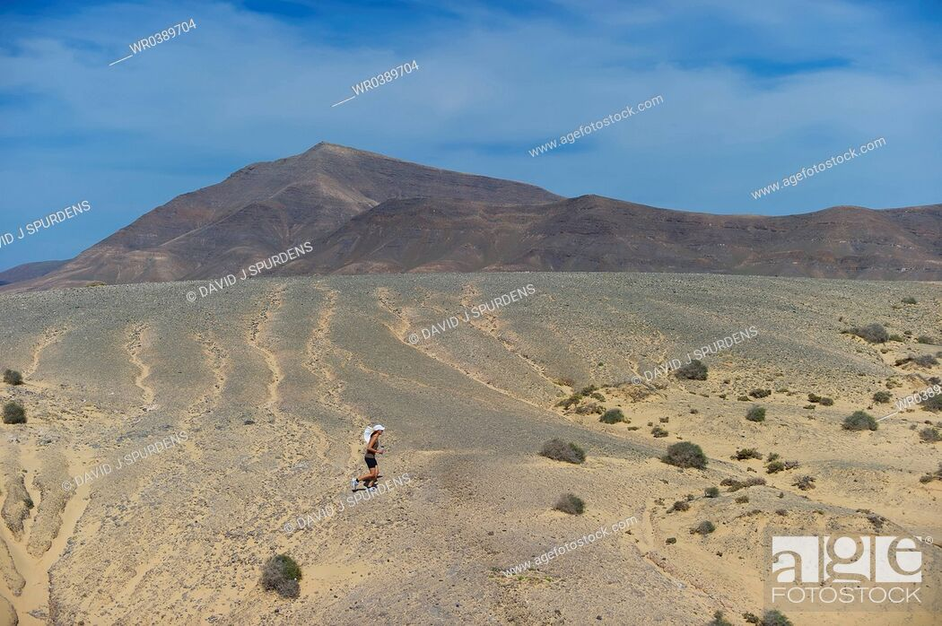 Stock Photo: An Ultra Distance runner crossing vocanic desert with water bottle and sun hat.