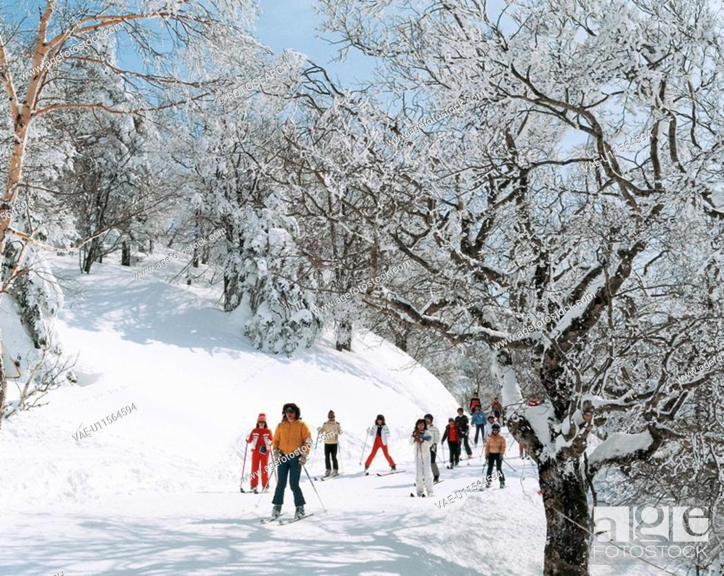 Stock Photo: winter, landscape, snowscape, forest, mountain, human, nature.