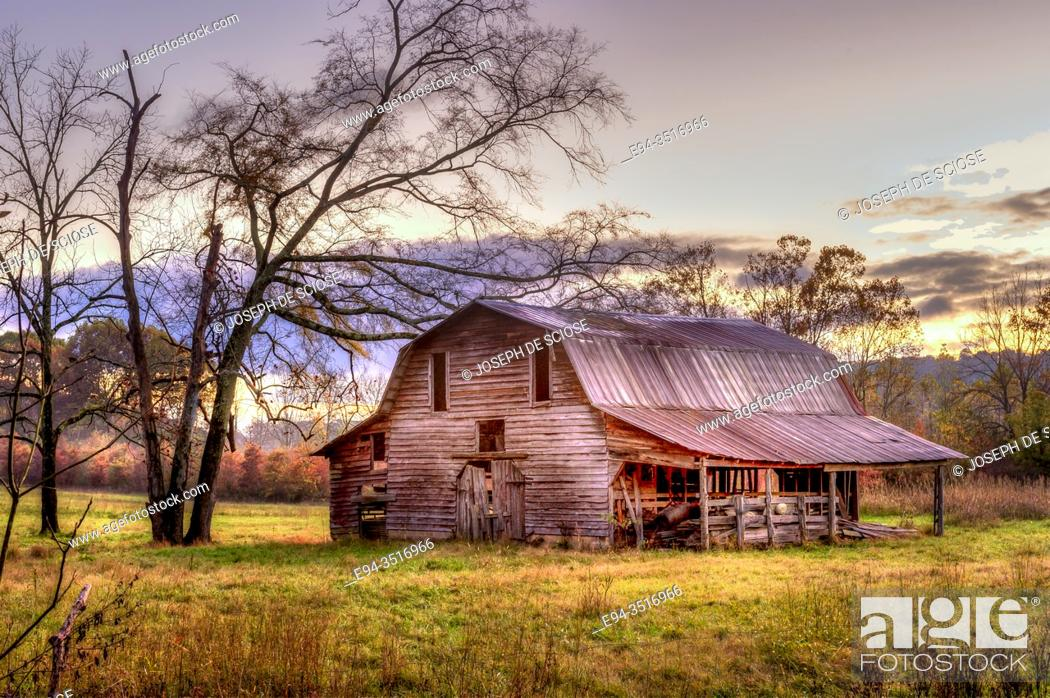 Photo de stock: A old wooden barn in a meadow, framed by trees in the autumn.