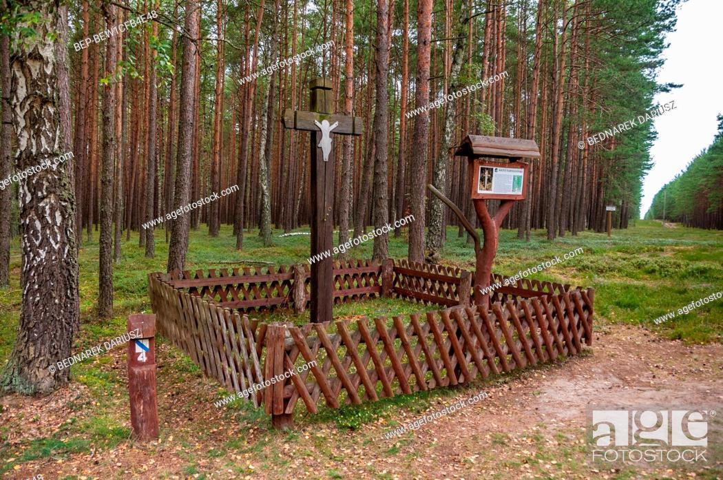 Imagen: Tuchola Pinewoods, Podlaskie Voivodeship, Poland.