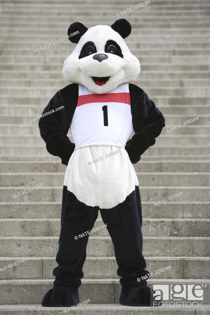 Stock Photo: Panda Posing.