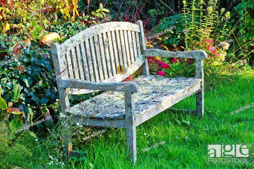 Wooden Bench Covered With Lichen In The Natural Garden In The Cote Des Bruyeres Region In The Stock Photo Picture And Rights Managed Image Pic Mba 10337586 Agefotostock