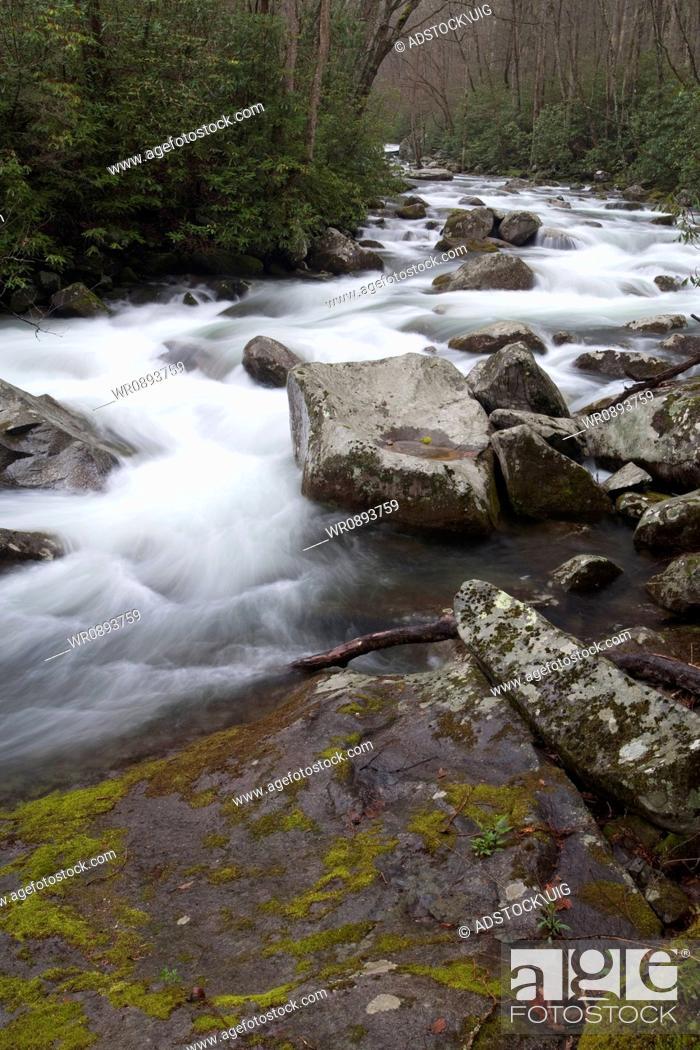 Stock Photo: Big Creek, Great Smoky Mountains National Park.