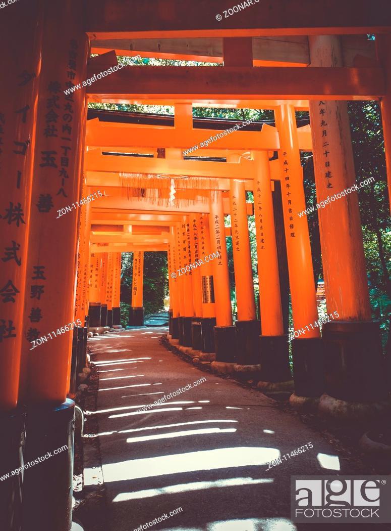 Imagen: Fushimi Inari Taisha torii shrine, Kyoto, Japan.